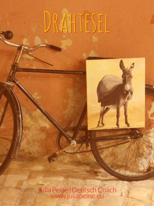 Drahtesel | De mooiste Duitse woorden | Julia Peine Deutsch Coach | Utrecht | Leidsche Rijn
