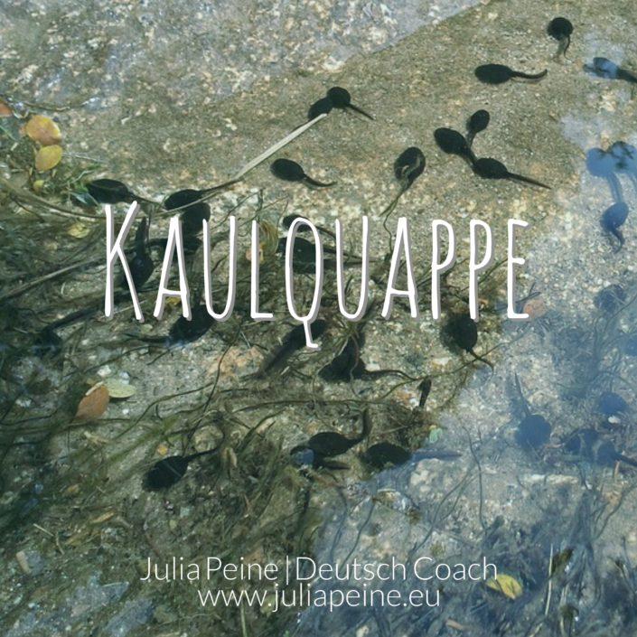 Kaulquappe | De mooiste Duitse woorden | Julia Peine Deutsch Coach | Utrecht | Leidsche Rijn