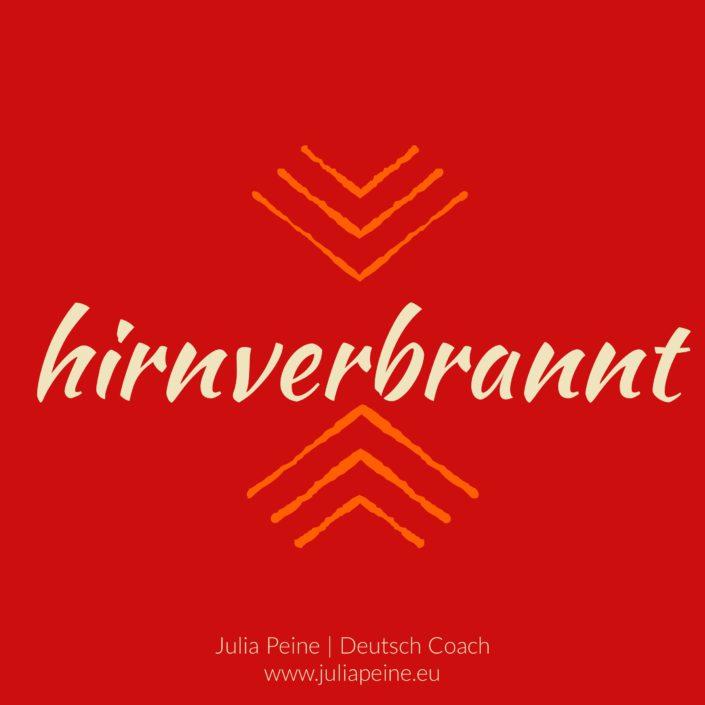 hirnverbrannt | De mooiste Duitse woorden | Julia Peine Deutsch Coach | Utrecht | Leidsche Rijn