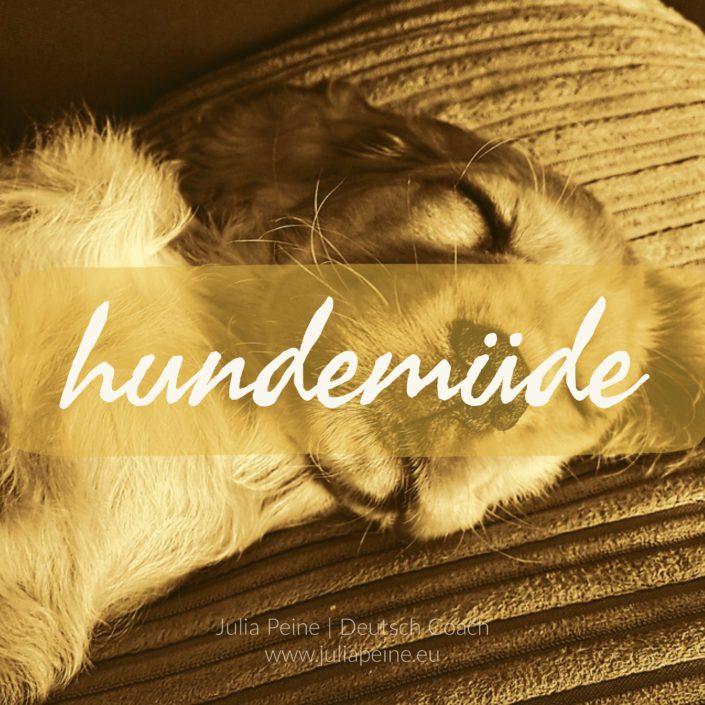 hundemüde | De mooiste Duitse woorden | Julia Peine Deutsch Coach | Utrecht | Leidsche Rijn