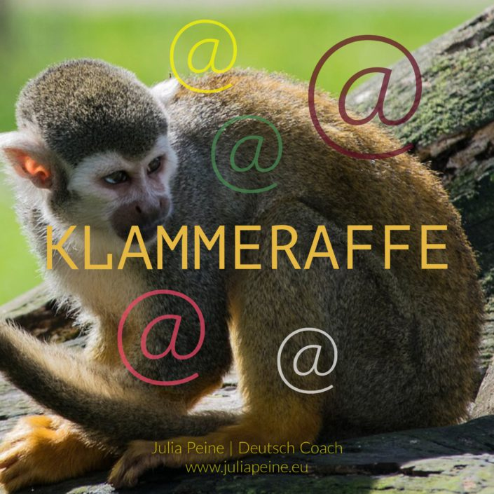 Klammeraffe | De mooiste Duitse woorden | Julia Peine Deutsch Coach | Utrecht | Leidsche Rijn