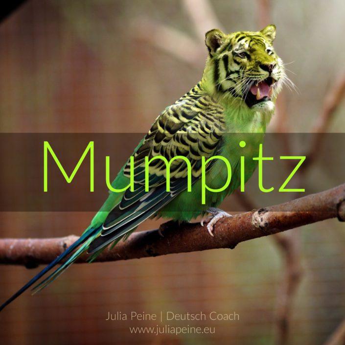 Mumpitz | De mooiste Duitse woorden | Julia Peine Deutsch Coach | Utrecht | Leidsche Rijn